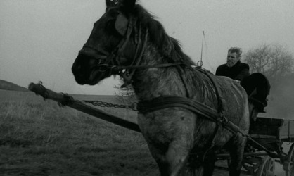 Ricsi and János Derzsi in 'The Turin Horse.' Image courtesy of the Cinema Guild
