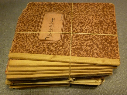 My fathers journals