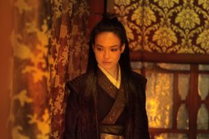 Shu Qi Assassin